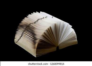 Old dictionary on spine and fanned isolated on black
