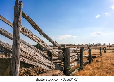 Old dilapidated wooden cattle race fence in the country with detailed wood grain and splits and rusty old wire remaining on rails.