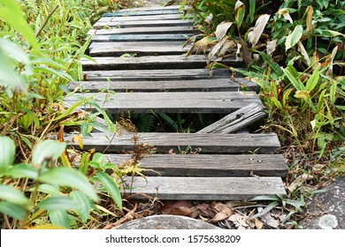 old and dirty broken wood bridge on walk way