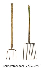 Old dirty pitchforks isolated on white background.