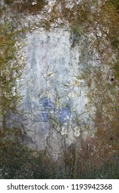 Old dirty wall covered with moss and mold - grunge texture