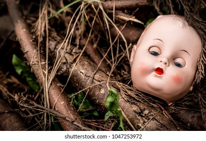 Old dolls head with eyes closed lying on fallen tree branches.