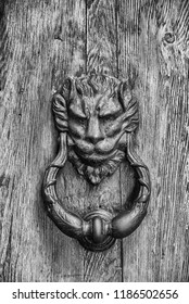 Old door clapper in the shape of a lion on a wooden door (Black and White)
