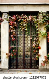 An old doorway in Poland with overgrown foliage