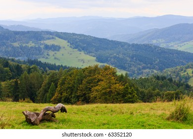Old dry large tree branch and mountainous landscape on background