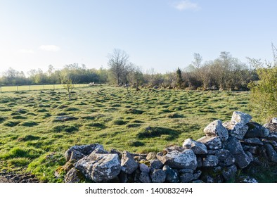 Old dry stonewall by a tufted green grassland by springtime