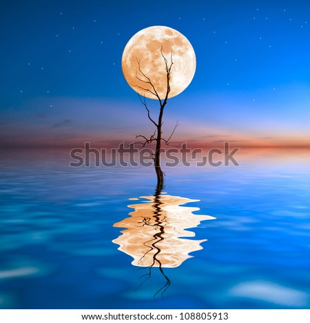 Old dry tree in water with big moon on background, reflection in water