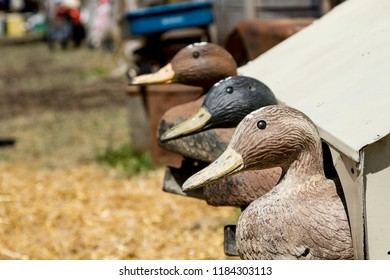 Old Duck Decoys for Hunting at a swap meet