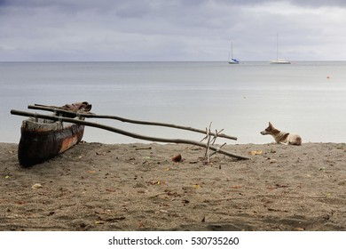 Old dugout fishing rowboat with outrigger stranded on the beach and dog lying on the coarse sand by its side-luxury sailboats on the background anchored in the bay facing Lamen Bay Village in Vanuatu.