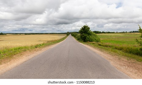 old dusty paved road in the countryside in dusky weather, grass and trees grow on the sidelines