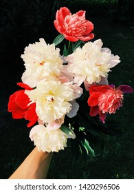 Old Dutch masters style photography of peonies bouquet