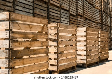 Old empty wooden crates outdoors on sunny day