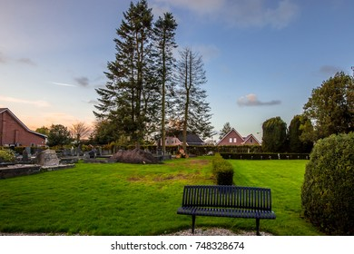 An old european cemetery in the nature light and pine trees background.