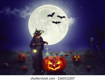 An old fairy conjures on a pumpkin field at night. A huge moon behind her back. Silhouettes of three bats are visible on its background.