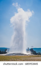 Old Faithful Geyser Erupting at Yellowstone National Park.