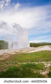 Old Faithful geyser. Yellowstone National Park. Wyoming. USA. Geysers.