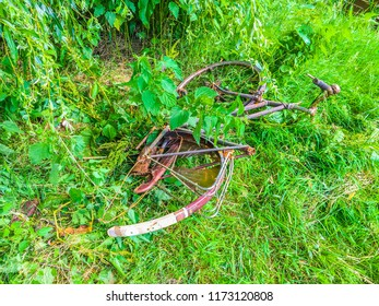 old fallen apart rusty bicycle thrown away in the park in a grass field