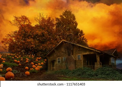 Old farm house by trees by Pumpkin Patch in Oregon during fall harvest season