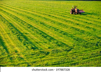 Old farm tractor in a mowed field in Stowe Vermont, USA