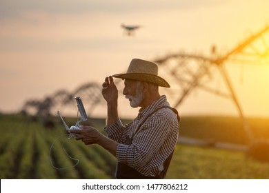 Old farmer with hat holding remote control for drone flying above soybean field with irrigation system in summer