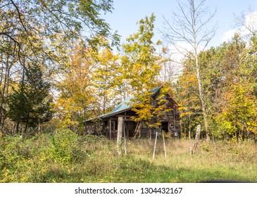 Old farmhouse amidst autumn leaves