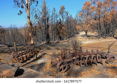 Old farming machine used as outdoor decoration. Trees and bushland burnt during ferocious bushfire in the Adelaide Hills, South Australia in December 2019.