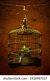 Old fashioned Bamboo bird cage with fake little birds isolated on a brown background.