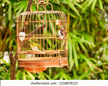 Old fashioned Bamboo bird cages for sale for song birds in bird street Hong Kong.