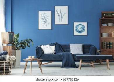 Old fashioned blue lounge with wooden decoration and navy sofa