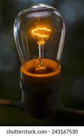 Old fashioned, original Edison style light bulb.  Turned on.