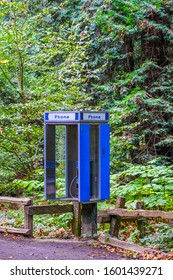 An old fashioned Phone Booth in the Woods