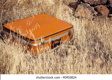 Old Fashioned Suitcase in yellow grass