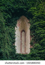 Old Faux Arch Fake Window Stucco Frame. Old wall covered with curling trees. Retro architecture decoration element