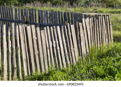 an old fence, made of wooden boards, having a lot of defects. Close-up photo of a growing grass near a fence