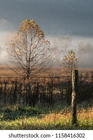 Old Fence Post in Foggy Valley in Autumn