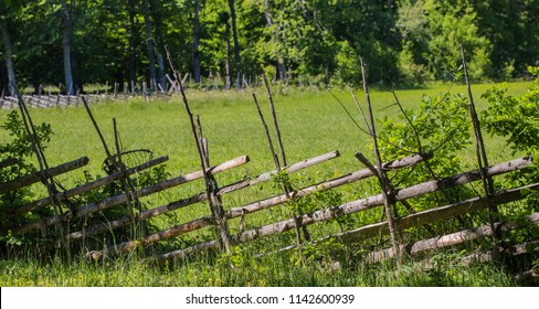 Old fence at a summer meadow on the island Gotland Sweden in the Baltic sea