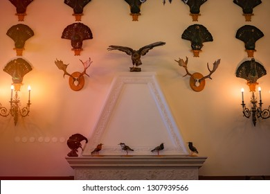 Old fireplace in castle room with trophies. Stuffed birds and animal's horns on wall with lamps