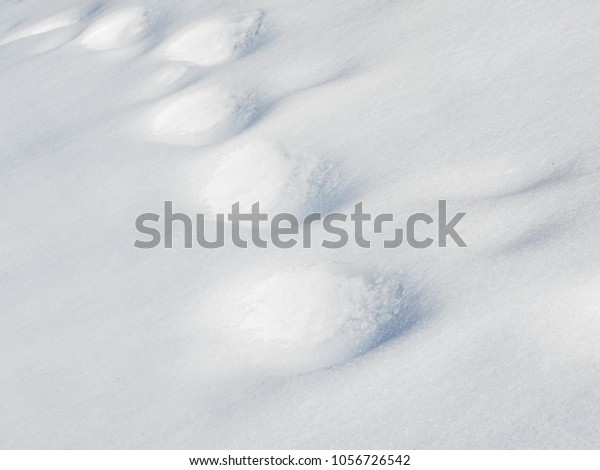 Old footprints in deep snow at winter