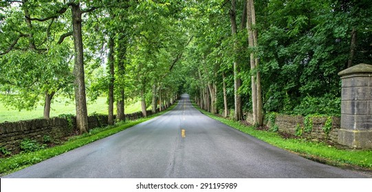 Old Frankfort Pike in Kentucky is lined with historic stone fences and world famous horse farms. The thoroughbreds and their farms are a huge draw for tourists and are world renowned for their beauty.