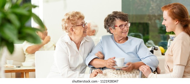 An old friend visiting an elderly woman in a wheelchair in a luxury nursing home. Professional caretaker assisting. Panorama.