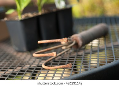 Old garden cultivator tool on a mesh metal table with plants in a starter tray in the background.