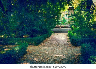 Old garden in Parma, Italy. Nature landscape.