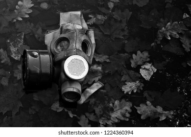 An old gas mask lies among dead foliage, a symbol of the horrors of nuclear war and chemical weapons and doom.