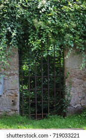 old gate