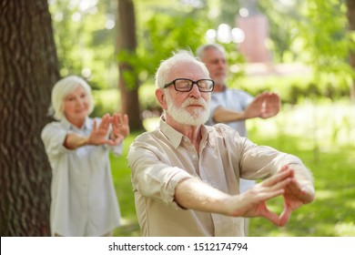 Old gentleman attending qigong class in the park stock photo