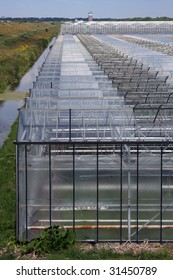 Old glass greenhouses as far as the eye can see. Westland is a part of Holland also known as the glass city.