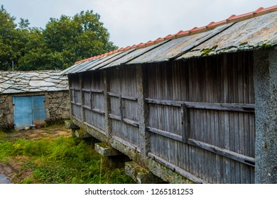 Old Granaries (espigueiros) in the village of Paiva, Portugal. Grain could be stored in cool, well ventilated, dry conditions at the right humidity.