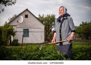 Old grandmother works in the garden with flowers