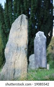 Old gravestones in grass