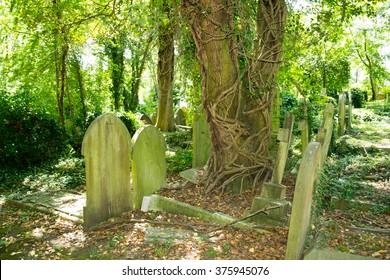 Old graveyard outdoor view
